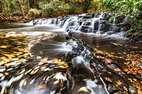 20181015-JAH04942:  Allens Creek cascades through Corbetts Glen in Penfield NY.